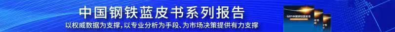2019中国钢铁lan皮书系列baogao